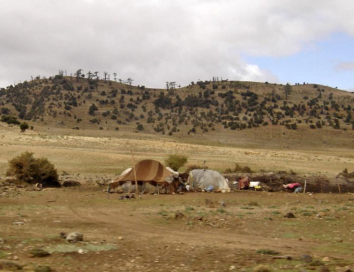 nomad01.jpg
