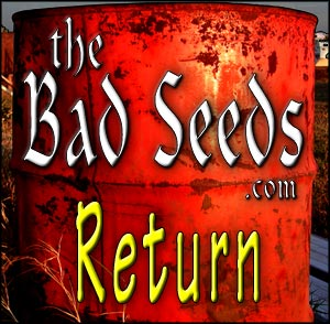 theBadSeeds.com > The Bad Seeds - Return album cover